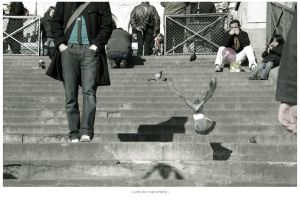 life on the steps by kn23