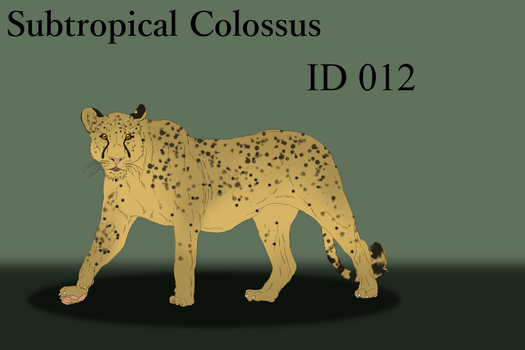 Subtropical Colissus Import 012 by LiaLithiumTM