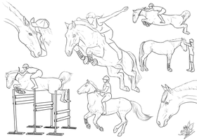 Horse Jumping Collage by emmy1320