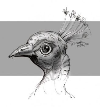 Peacock by nairikh