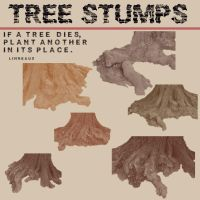Six Tree Stumps by Urceola