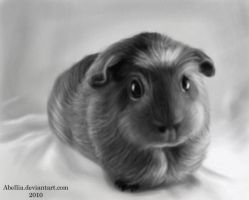 Speed Paint- B+W Guinea Pig by Abellia