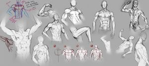 Male Body by moni158