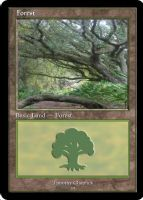 Magic Forest Cumberland Island Photo Card I by lizking10152011