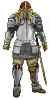 Paladin Armor colored by Armonis