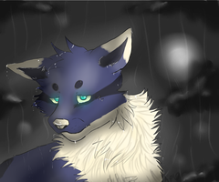 *In the Storm* by Apwolf
