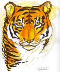 .tiger finale. by CheshireSmile