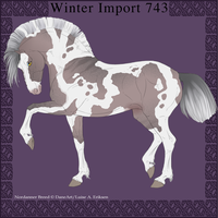 Nordanner Winter Import 743 by DemiWolfe