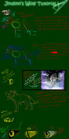 Drawing A Wolf ::Tutorial:: by Jindovi