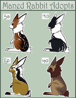 Maned Rabbit Adopts 4 CLOSED by Rhenae