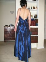 Blue Gown Back by zandystock