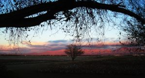 Evening in New Mexico USA by SharPhotography