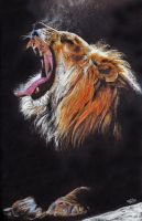 Lion by giuliagaroniart