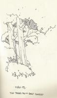 Trees by rohwer