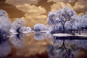 frozen -ir- by 32tsunami