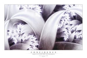 Confidence by rougeux