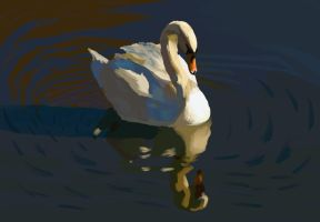 Swan by Rose--Wolf