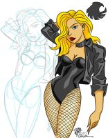 DSC Lovember 28 Black Canary by eiledon