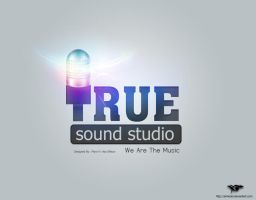 True Sound LOGO.3 - Light by elmooor