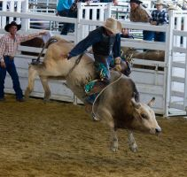 STOCK 2013 Rodeo-168 by fillyrox