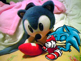 Sonic and Plush by MarillMatey