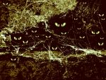 Eyes in dark green -wallpaper by rockgem