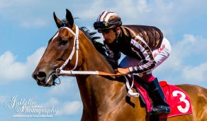Horse Racing 520 by JullelinPhotography