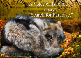 A voice calls to me ... by Tennant-Wolf
