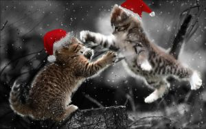 Cats Xmas Duel by ozzyriand