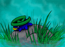 Lotad in the Colorful Rough