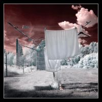 Laundry by Basement127