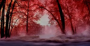 red winter ... by KariLiimatainen