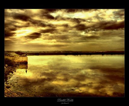 Parallel Worlds III by Inebriantia