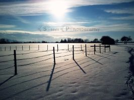 Snow Landscape by go4music