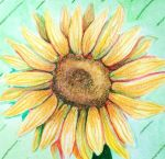 Sunflower by ImagineArtVibes