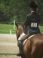 Just Another Day in the Show Ring by CaraFox