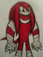 Sonic Boom: Knuckles by Huntertallonian