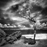 Lost Beach - infrared by MichiLauke