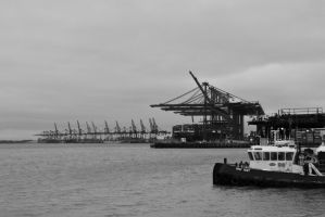 Felixstowe port by PhilsPictures