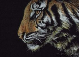 Tiger Profile II by MistiqueStudio