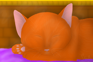 Sleeping kitteh by Sisa611