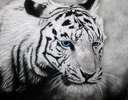 Tiger Portrait by Annasko