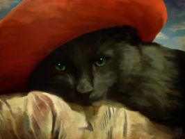 Cat in a hat      (Draw my Photo! Contest) by Hadabro