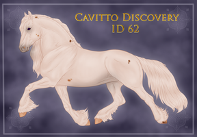 Cavitto Discovery 62 by ThatDenver