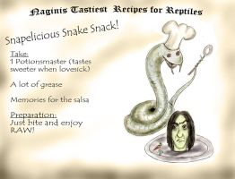Naginis cooking book by guad