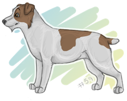 NEW Jack Russell Terrier by x-Shantella-x