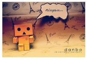 My Real Danbo IV by lovewhizkidz