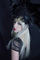 feather headpiece - stock by Liancary-Stock