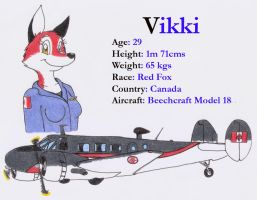 Vikki and her OTHER beech 18 by DingoPatagonico