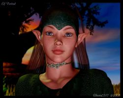 .:Elf Portrait:. by boris0317